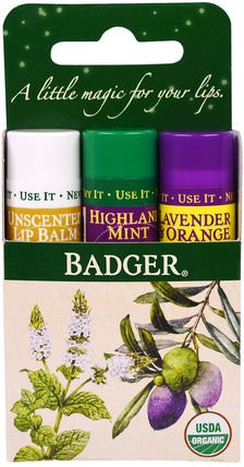 Lip Balm Gift Set, Green Box, 3 Pack.15 oz (4.2 g) Each by Badger Company, 洗澡,美容,禮品套裝,唇部護理 HK 香港