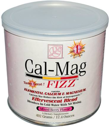 Cal-Mag Fizz, Mixed Berry Flavor, 17.4 oz (492 g) by Baywood, 補充劑,泡騰片 HK 香港