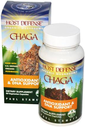 Host Defense, Chaga, 60 Veggie Caps by Fungi Perfecti, 補充劑,藥用蘑菇,chaga蘑菇,蘑菇膠囊 HK 香港
