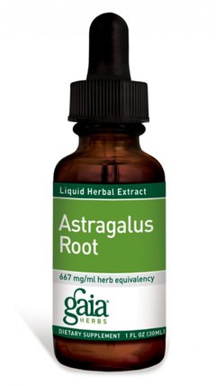 Astragalus Root, 1 fl oz (30 ml) by Gaia Herbs, 補充劑,adaptogen,感冒和病毒,黃芪液體 HK 香港
