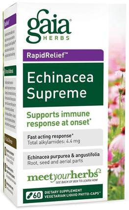 Echinacea Supreme, 60 Liquid Filled Capsules by Gaia Herbs, 補充劑,抗生素,紫錐花膠囊片 HK 香港