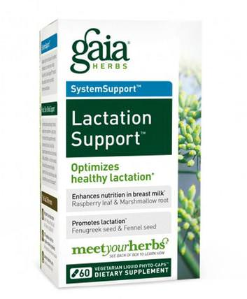 SystemSupport, Lactation Support, 60 Vegetarian Liquid Phyto-Caps by Gaia Herbs, 健康,女性 HK 香港
