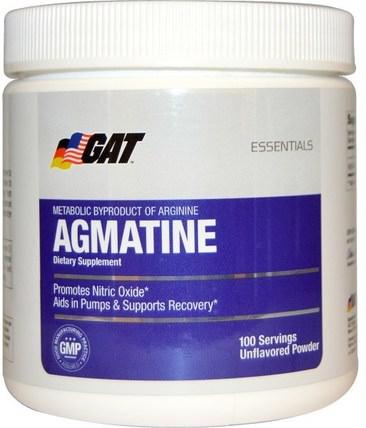 Essentials, Agmatine, Unflavored Powder, 75 g by GAT, 運動,運動,一氧化氮 HK 香港