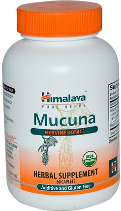 Mucuna, Nervine Tonic, 60 Caplets by Himalaya Herbal Healthcare, 草藥,阿育吠陀阿育吠陀草藥,mucuna HK 香港