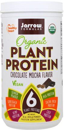 Organic Plant Protein, Chocolate Mocha Flavor, 16 oz (450 g) by Jarrow Formulas, 補充劑,蛋白質 HK 香港