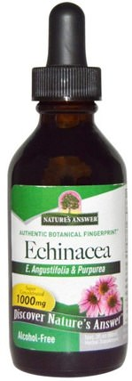 Echinacea, Alcohol-Free, 1000 mg, 2 fl oz (60 ml) by Natures Answer, 補充劑,抗生素,紫錐花液體 HK 香港