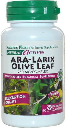 Natures Plus, Herbal Actives, ARA-Larix Olive Leaf Complex, 750 mg, 60 Veggie Caps 健康,感冒流感和病毒,橄欖葉