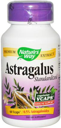 Astragalus Standardized, 60 Veggie Caps by Natures Way, 補品,健康,黃芪 HK 香港