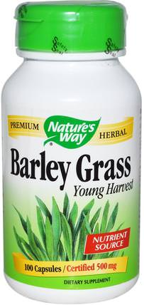 Barley Grass, Young Harvest, 500 mg, 100 Capsules by Natures Way, 補品,超級食品,大麥草 HK 香港