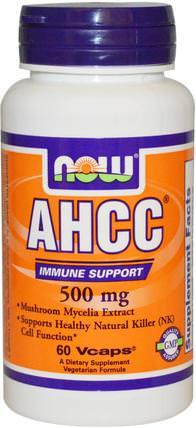 AHCC, 500 mg, 60 Veg Capsules by Now Foods, 補充劑,藥用蘑菇,ahcc HK 香港