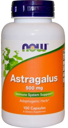 Astragalus, 500 mg, 100 Capsules by Now Foods, 健康,感冒和病毒,黃芪 HK 香港