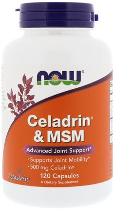 Celadrin & MSM, 120 Capsules by Now Foods, 健康,炎症,celadrin,背痛 HK 香港