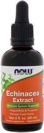 Echinacea Extract, 2 fl oz (60 ml) by Now Foods, 補充劑,抗生素,紫錐花液體 HK 香港
