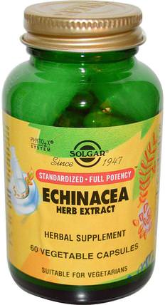 Echinacea Herb Extract, 60 Vegetable Capsules by Solgar, 補充劑,抗生素,紫錐花膠囊片 HK 香港