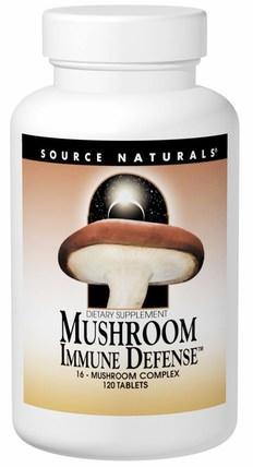 Mushroom Immune Defense, 16-Mushroom Complex, 120 Tablets by Source Naturals, 補充劑,藥用蘑菇,蘑菇混合組合,健康,感冒和病毒,免疫系統 HK 香港