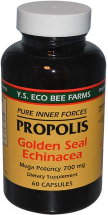Propolis, Golden Seal Echinacea, 60 Capsules by Y.S. Eco Bee Farms, 補充劑,抗生素,紫錐花,蜂膠 HK 香港