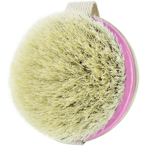 EcoTools, Dry Brush, 1 Brush Review