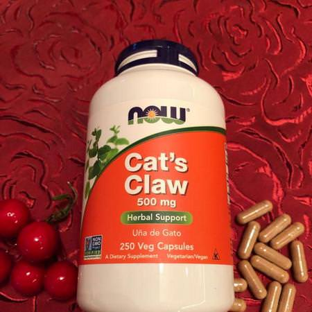 Now Foods, Cat's Claw, 500 mg, 100 Veg Capsules